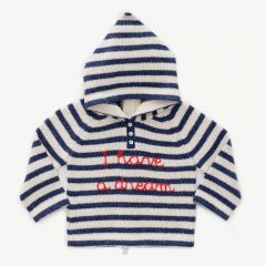 Striped Hooded Sweater in Navy & White