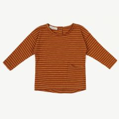 Long Sleeve Top with Stripes in Golden Spice