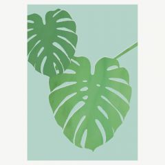 """Poster """"Monstera"""" (A3)"""